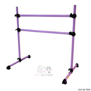 portable barre pink